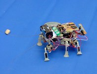 [jpl bug robot]