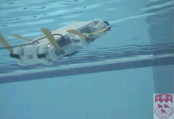 rhex swimming