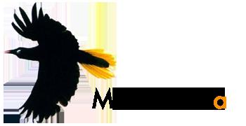 montezuma logo
